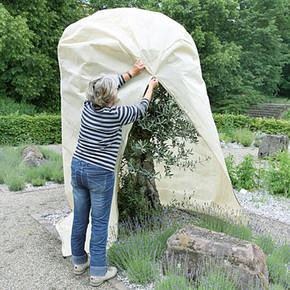 Bahçe Serası 240x125 cm