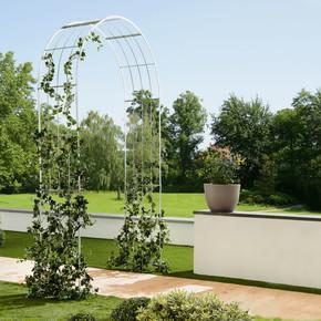 Gardol Bahçe Gül Kemeri Gümüş