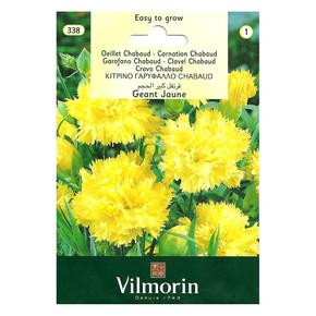 Sarı Renkli İri Çiçekli Karanfil