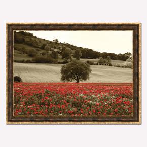 50x70 cm Artprint Çerçeveli Tablo