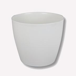 Üçsan Begonya Saksısı Beyaz 14 cm