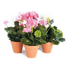 MICA Saksıda Sardunya Yapay Çiçek Beyaz