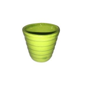 Mini Kaktüs Saksı Yeşil