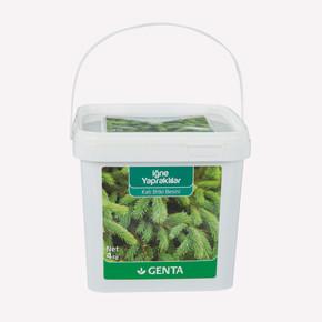 Genta İğne Yapraklı Bitkiler İçin Katı Besin