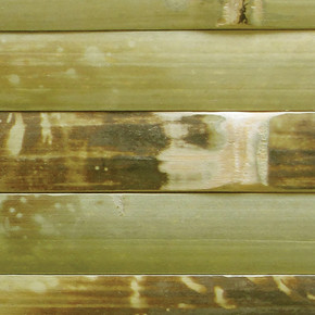 Bambu Duvar Kaplaması-Ex17V