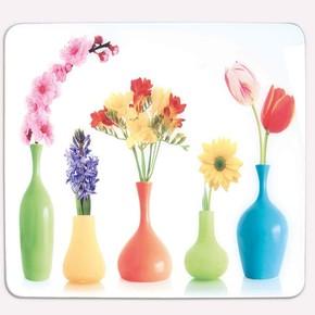 Saban Dekoratif Cam Ocak Koruyucu Saksı ve Çiçekler