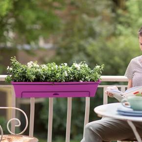 Balkon Saksısı Set Kiraz Green Basics