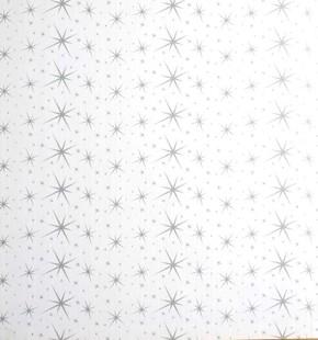 59,5X59,5 Yıldız Siyah 8Mm