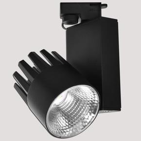 Dlc Ray Serisi NR240-2 30W 6500K Siyah Spot