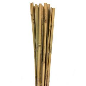 Gardener Bambu Bitki Destek Çubuğu 120 cm