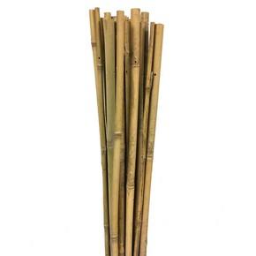 Gardener Bambu Bitki Destek Çubuğu 240 cm