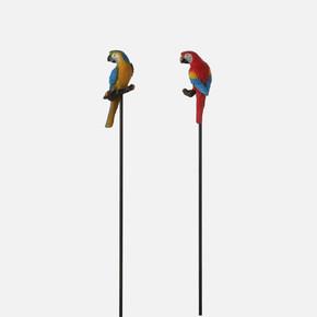Bahçe Süsü Papağan