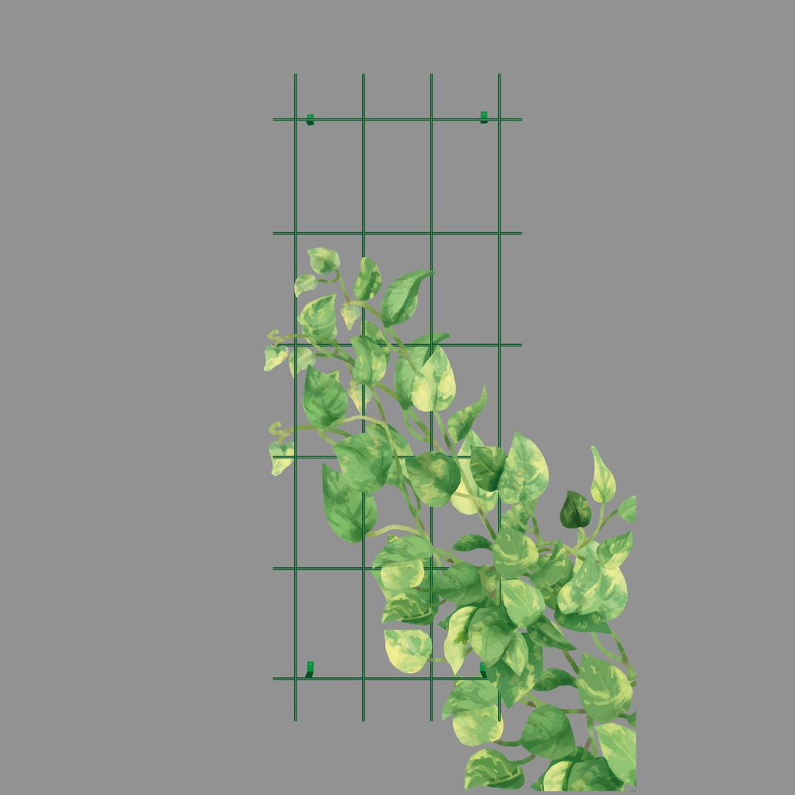 Gardener Sarmaşık Bitkilere Özel Destek Kafesi Yeşil 60 cm