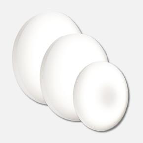 Orbis 16W 30cm Led Plafonyer Beyaz Işık