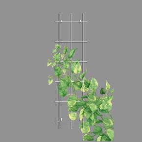 Gardener Sarmaşık Bitkilere Özel Destek Kafesi Beyaz 45 cm