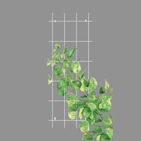 Gardener Sarmaşık Bitkilere Özel Destek Kafesi Beyaz 60 cm