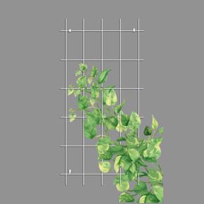 Gardener Sarmaşık Bitkilere Özel Destek Kafesi Beyaz 75 cm