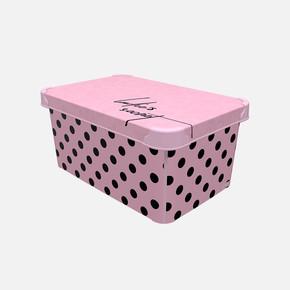 Style Box Ladie's Secret 10L