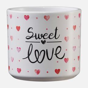 Little Love Sweet Love Saksı
