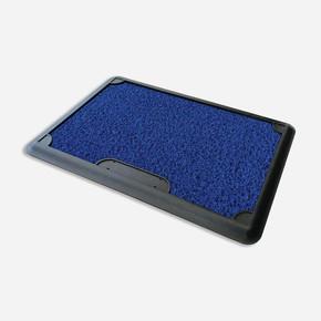 Dezenfektan Paspas Mavi
