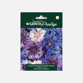 Genta Prestige Karışık Renkli Peygamber Çiçeği Kantaron Tohumu