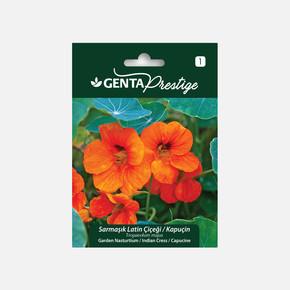 Genta Prestige Sarmaşık Latin Çiçeği Kapuçin Tohumu